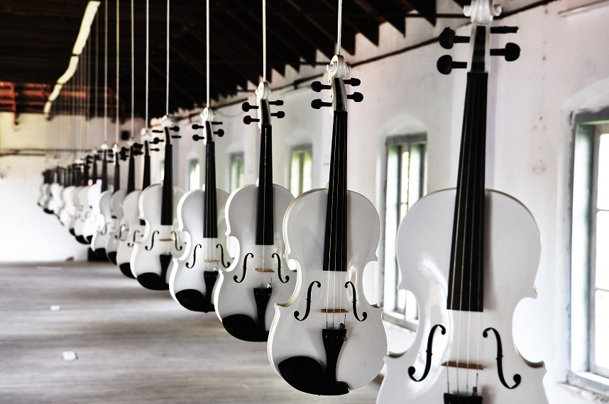 Ibrahim Quraishi. Islamic Violins